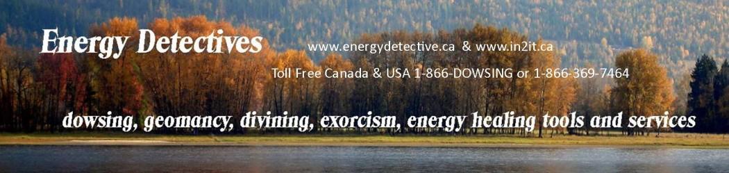 energydetective.ca